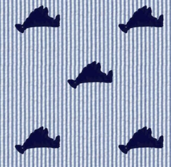 Martha's Vineyard Seersucker Shorts - Kids by Piping Prints